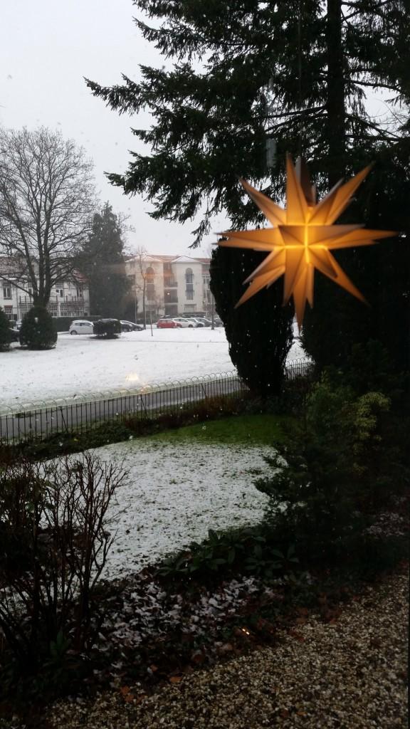 Wilhelminapark - Kerst 2014
