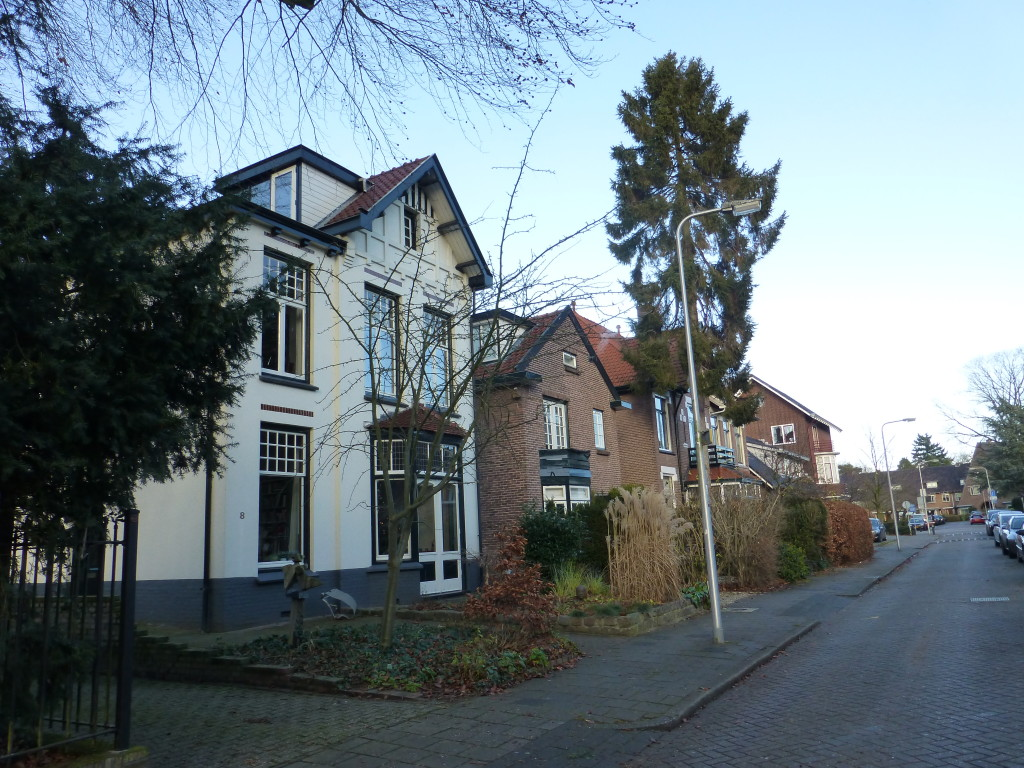 Bethaniëlaan - winter 2015