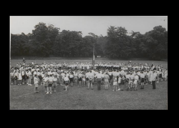 Bisonpark - 1953