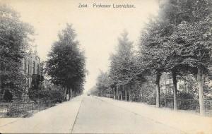 Professor Lorentzlaan Links nr's 49-51 nabij Boschlust en rechts nr's 40-42. 1928. Coll. Oud Seyst